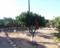 Resale - Country Property - La Palma
